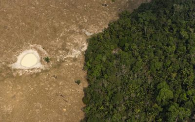 SPECIAL AMAZON 2/4: THE 7 MAIN THREATS TO THE BRAZILIAN AMAZON