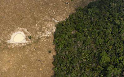 ESPECIAL AMAZÔNIA 2/4: AS 7 PRINCIPAIS AMEAÇAS À AMAZÔNIA BRASILEIRA